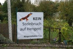 Hengen-Adler